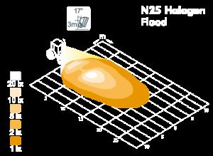 n25_model.png